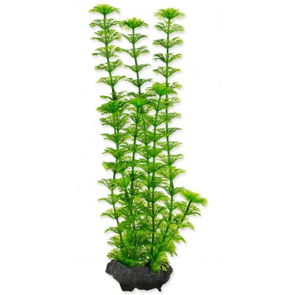 Rostlina Ambulia Tetra M 23cm Ostatní