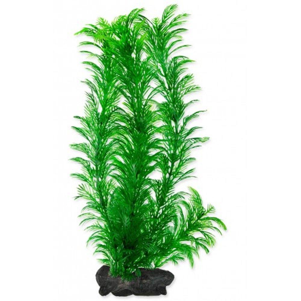 Rostlina Green Cabomba Tetra L 30cm Ostatní