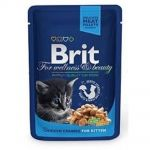 Brit premium 100g kitten kaps.chicken v omáčce 1ks