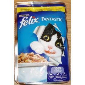 Felix 100g kaps.kuře v želé