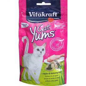 Vit.Cat Yums kuřecí s trávou 40g polštářky