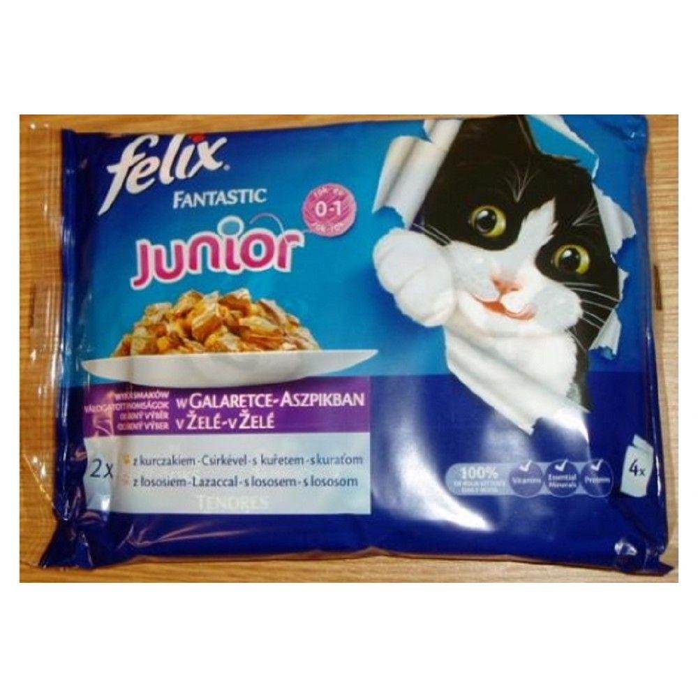 Felix 100gx4ks kaps.jun.kuře+losos Ostatní