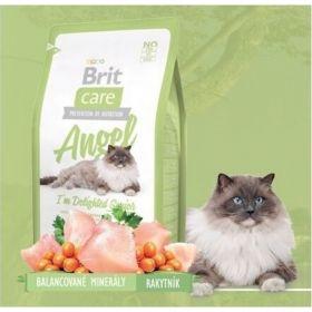Brit care 0,4kg cat Angel Senior