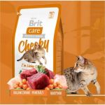 Brit care 0,4kg cat Cheeky Living Outdoor