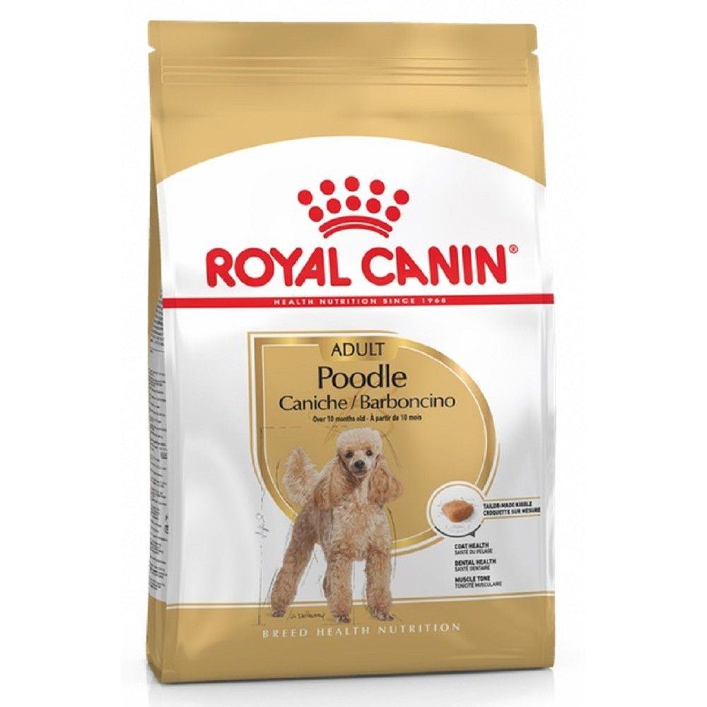 Royal Canin 1,5kg mini Adult pudl dog