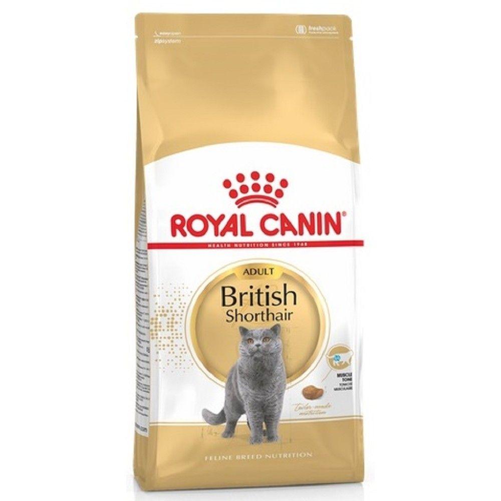 RC 10kg British Shorthair cat Royal Canin